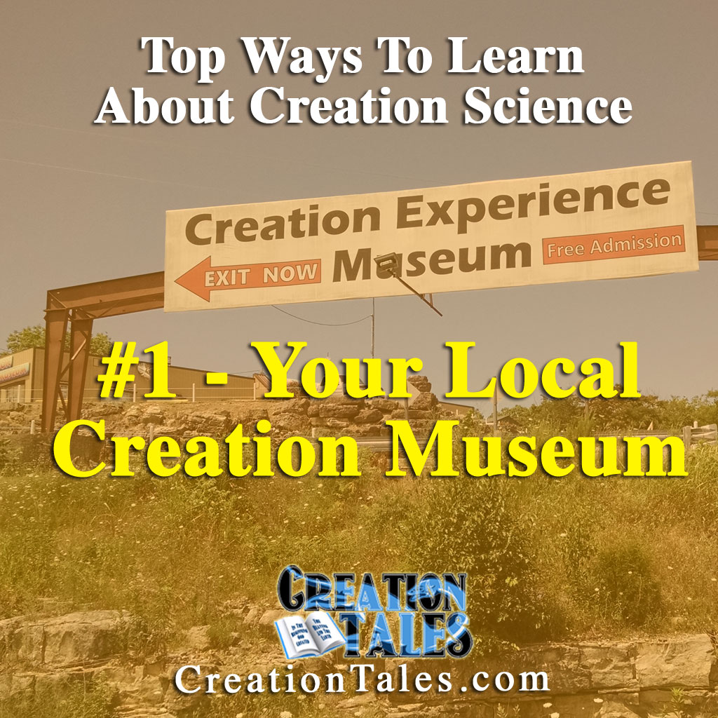 7 Ways To Learn About Creation - #1 Your Local Creation Museum