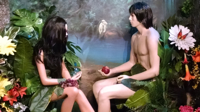 Adam and Eve at the creation
