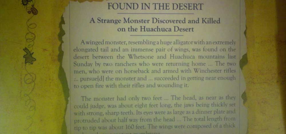Winged monster found in Desert